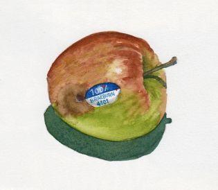 apple11