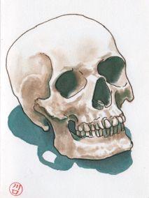 skulls etc1